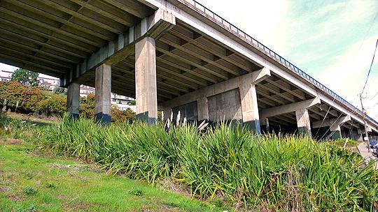 The overpass at Market Street, Precita Creek