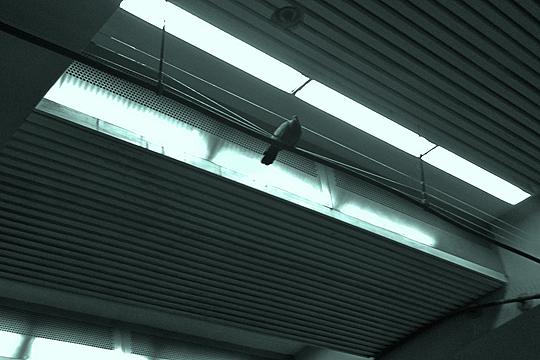 Anti-Pigeon at BART, San Francisco