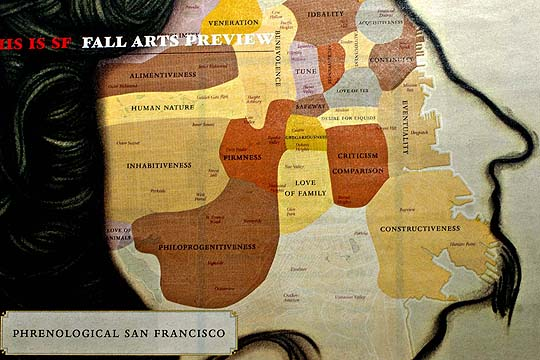 Phrenology Map 7x7 Magazine, San Francisco